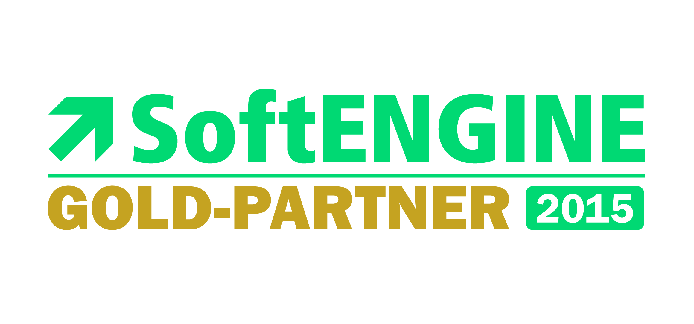 SoftENGINE Gold Partner 2015